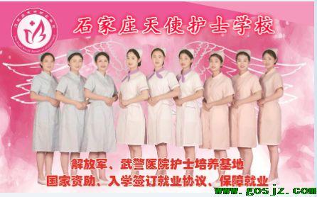 天使护士学校.png